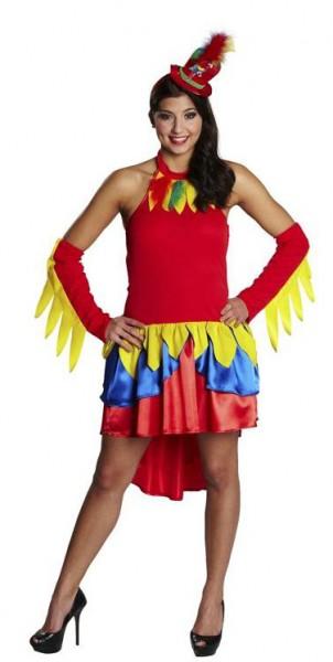 Kostüm Papagei